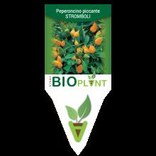 PEPERONCINO PICCANTE STROMBOLI-VIVAI BIOPLANT - SCICLI -